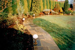 Garden footpath - Richard Carter